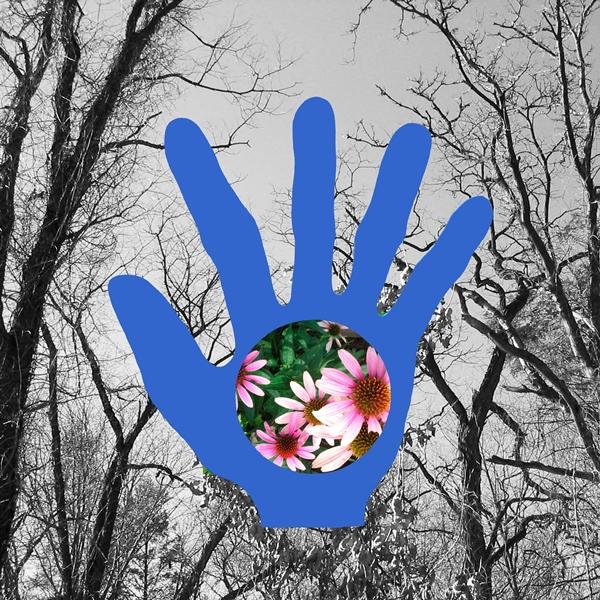 Through a Hand